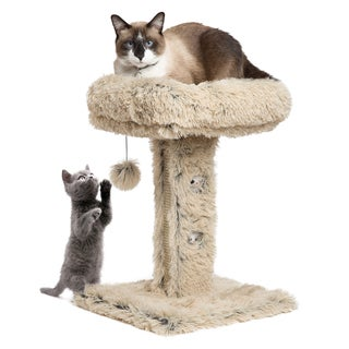Modern Kitty by Sheri Shag Cat Post Lounger with Sratching Surface