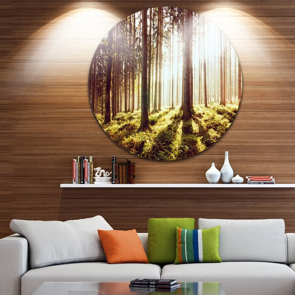 Designart 'Early Morning Shadows of Forest' Forest Round Metal Wall Art
