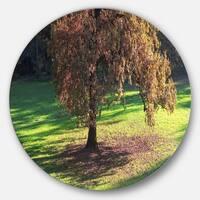 Designart 'Lonely Beautiful Autumn Tree' Landscape Circle Wall Art
