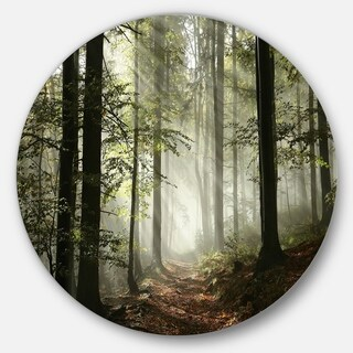 Designart 'Light in Dense Fall Forest with Fog' Landscape Large Circle Metal Wall art