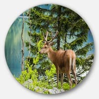 Designart 'Deer Stag near the Lake' Animal Circle Wall Art