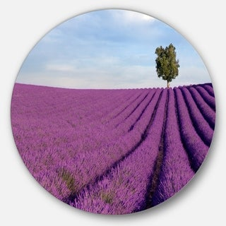 Designart 'Lavender Field with Solitary Tree' Landscape Photo Circle Wall Art