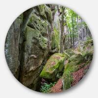 Designart 'Wild Deep Moss Forest Ukraine' Landscape Large Disc Metal Wall art