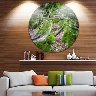 Designart 'Green Wild Deep Moss Forest' Landscape Round Wall Art