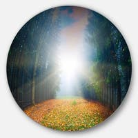 Designart 'Rising Sun Over Colorful Forest' Landscape Photo Disc Metal Wall Art
