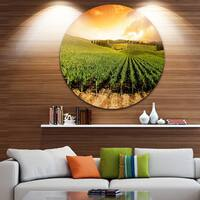 Designart 'Sunset Vineyard Panorama' Round Metal Wall Art Landscape