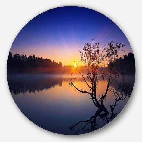 Designart 'Lonely Tree in Pond in Blue' Disc Metal Wall Art Landscape