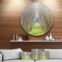 Designart 'Pathway Through Fall Green Trees' Landscape Photo Large Disc Metal Wall art