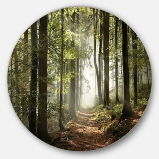 Designart 'Green Fall Forest with Sun Rays' Landscape Photo Disc Metal Artwork