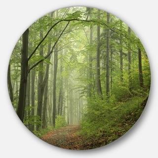 Designart 'Early Green Fall Forest' Landscape Photo Disc Metal Wall Art