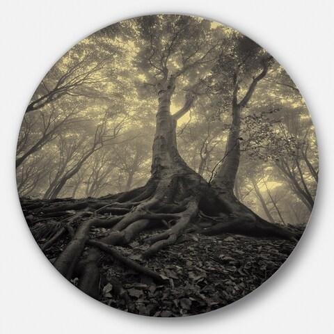 Designart 'Tree with Big Roots on Halloween' Landscape Photo Disc Metal Artwork