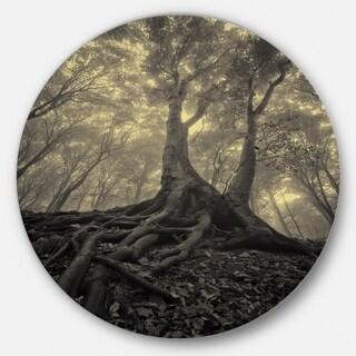 Designart 'Tree with Big Roots on Halloween' Landscape Photo Disc Metal Artwork|https://ak1.ostkcdn.com/images/products/14252976/P20841511.jpg?_ostk_perf_=percv&impolicy=medium
