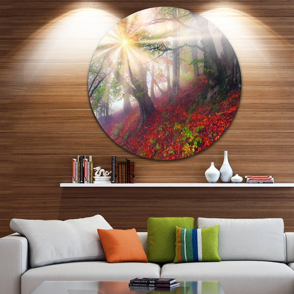 Designart 'Sun in Forest After Heavy Storm' Landscape Photo Disc Metal Wall Art