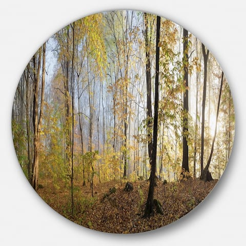 Designart 'Green Autumn Forest in Morning' Landscape Photo Large Disc Metal Wall art