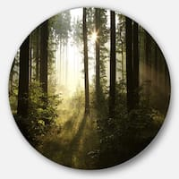Designart 'Early Morning Sun in Misty Forest' Landscape Photo Round Metal Wall Art