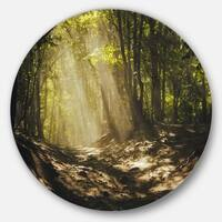 Designart 'Sun Rays Through Green Trees' Landscape Photo Circle Wall Art