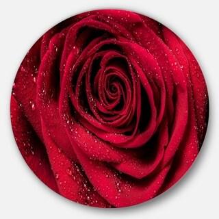 Designart 'Red Rose Petals with Rain Droplets' Floral Circle Metal Wall Art