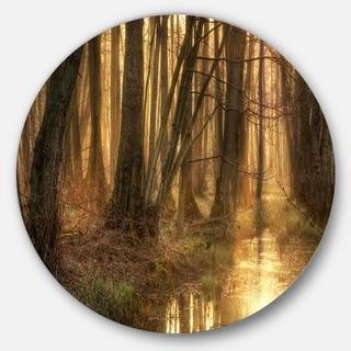 Designart 'Golden Morning in Dense Forest' Landscape Photo Large Disc Metal Wall art