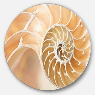 Designart 'Brown Nautilus Shell Pattern' Abstract Art Large Disc Metal Wall art