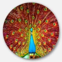 Designart 'Peacock Dancing' Animal Photography Circle Wall Art