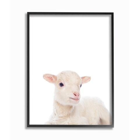 'Baby Animal Studio Photo Lamb' Framed Giclee Texturized Art