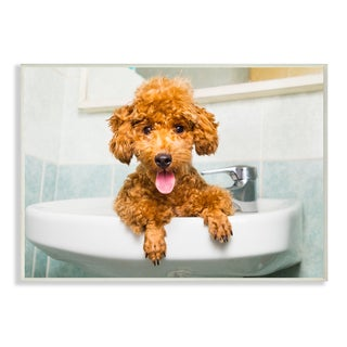 The Stupell Home Decor Collection 'Goldendoodle Puppy Sink Playtime' Wall Plaque Art
