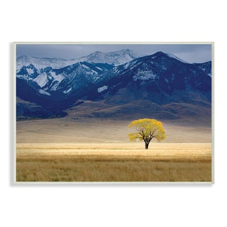 Stupell 'Open Range Landscape with Tree' Wall Plaque Art