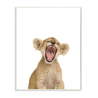 'Baby Lion Cub' Studio Photo Wall Plaque Art