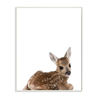 Stupell 'Baby Fawn' Studio Photo Wall Art Plaque