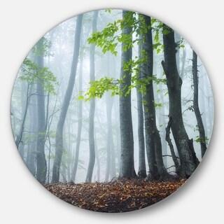 Designart 'Green Leaves in Old Forest' Landscape Photo Disc Metal Artwork