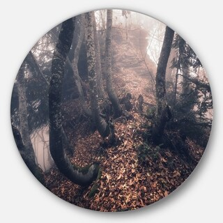 Designart 'Autumn Foggy Forest Trees' Landscape Photo Disc Metal Wall Art