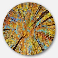 Designart 'Tree Tops in Autumn Forest' Trees Photo Disc Metal Wall Art