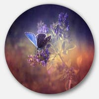 Designart 'Vintage Butterfly' Digital Art Floral Circle Wall Art