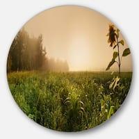 Designart 'Green Panoramic Landscape' Photo Disc Metal Artwork