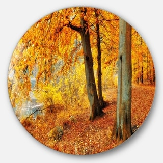 Designart 'Yellow Forest of Autumn' Landscape Photo Round Wall Art