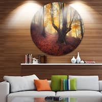 Designart 'Dark Old Yellow Forest' Landscape Photo Round Metal Wall Art