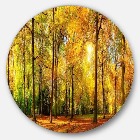 Designart 'Gorgeous Autumn of Sunny Forest' Landscape Photo Round Metal Wall Art