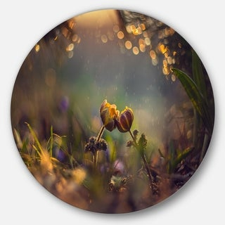 Designart 'Two Spring Flowers' Floral Photography Circle Wall Art