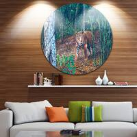 Designart 'Wandering Tiger in Forest' Animal Digital Art Large Disc Metal Wall art