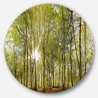 Designart 'Green Forest Panoramic View' Landscape Photo Disc Metal Wall Art