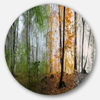Designart 'Morning Forest Panorama' Landscape Photo Round Metal Wall Art