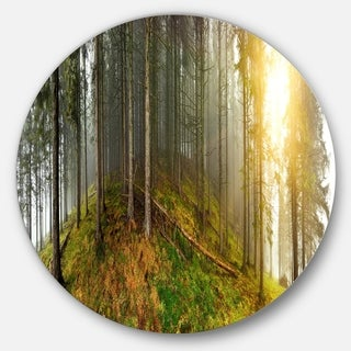 Designart 'Early Morning Sun in Forest' Landscape Photo Round Wall Art