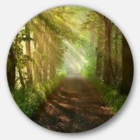 Designart 'Suns Peeks into Forest' Landscape Photo Disc Metal Wall Art