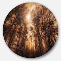 Designart 'Picturesque Autumn Forest' Landscape Photo Large Disc Metal Wall art
