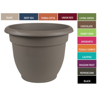 Bloem Ariana 6-inch Planter with Self Watering Grid
