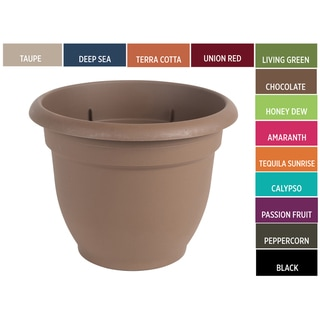 Bloem Ariana 12-inch Planter with Self Watering Grid
