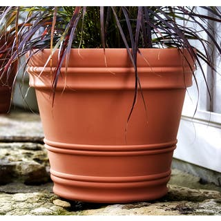 Bloem Rolled Rim 16-inch Terra Cotta Rim Planter|https://ak1.ostkcdn.com/images/products/14270368/P20856870.jpg?impolicy=medium