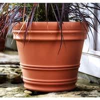 Bloem Rolled Rim 16-inch Terra Cotta Rim Planter