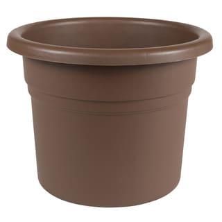 Bloem Posy 8-inch Chocolate Planter