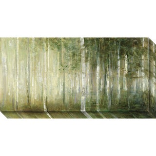 Canvas Art Gallery Wrap 'Resolutions' by Julia Purinton 30 x 15-inch